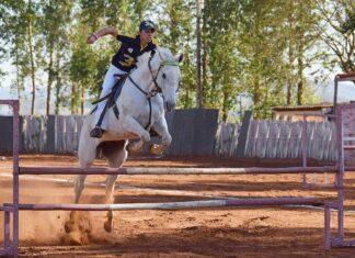 equitazione: il salto ad ostacoli